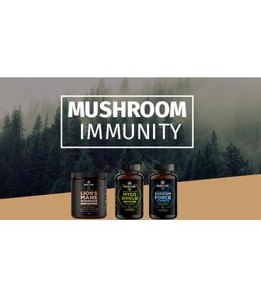 Mushroom Immunity BOX (Duży)