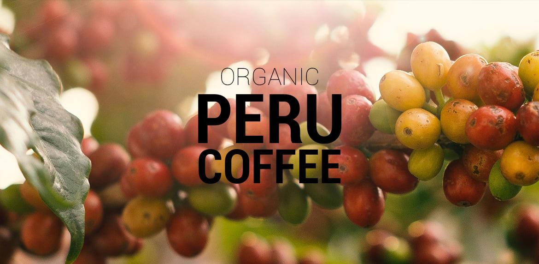 Organic Peru Coffee kawa