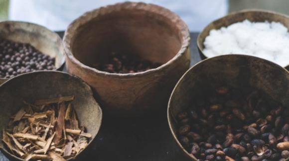 Układ odpornościowy - naturalne produkty wspomagające odporność (część 3)