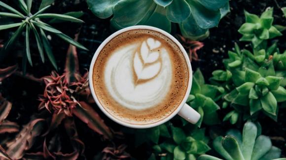 Kawa - wpływ na zdrowie i funkcje mentalne