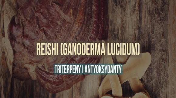 Reishi (Ganoderma lucidum) - triterpeny i antyoksydanty